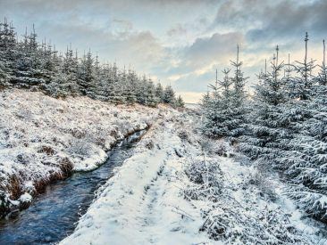 Snowy leet on Dartmoor