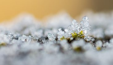 Macro of frost on a wall